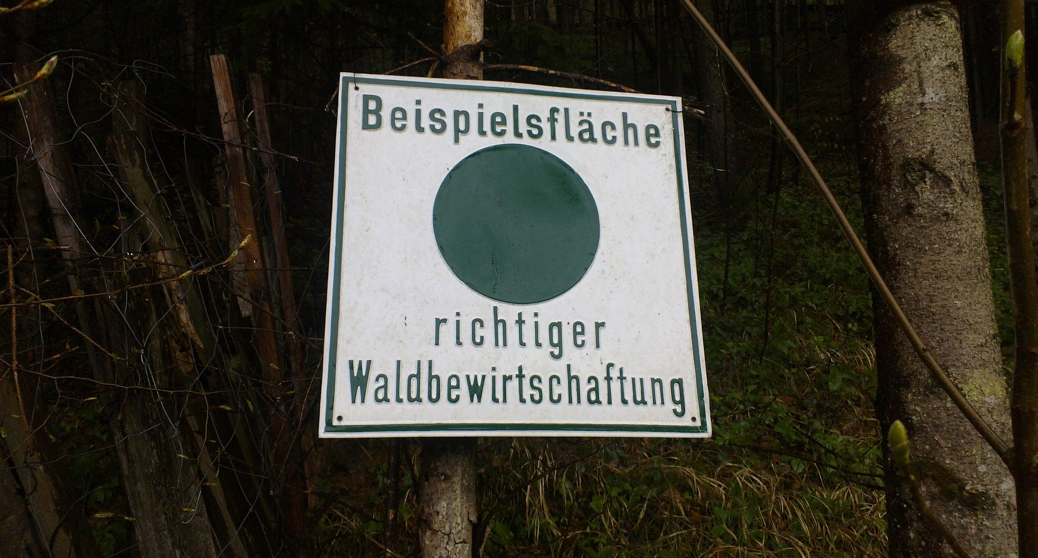 """Schild an einem Baum mit Aufschrift 'Beispielsfläche richtiger Waldbewirtschaftung"""""""