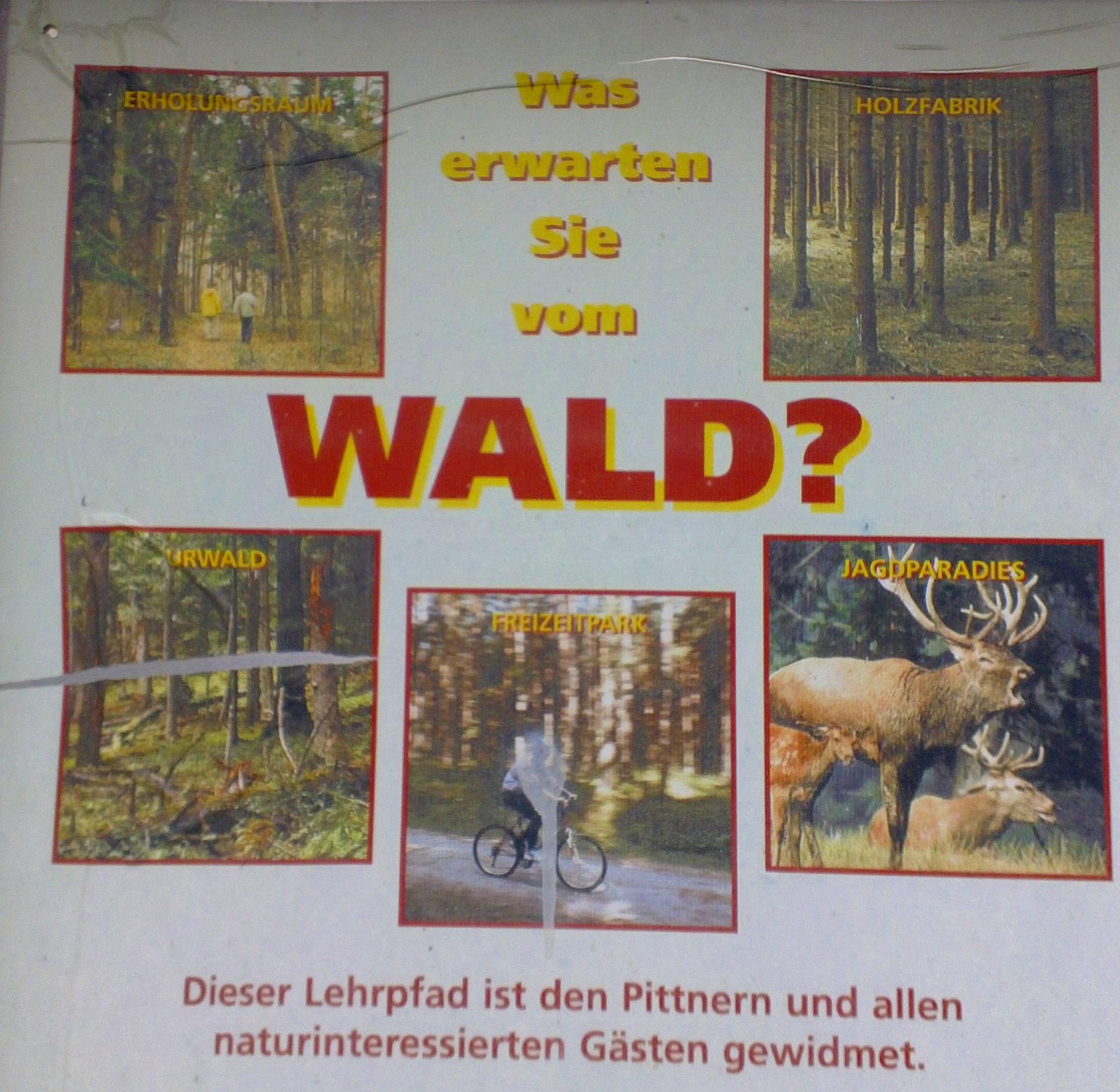 Schild Waldlehrpfad Pitten