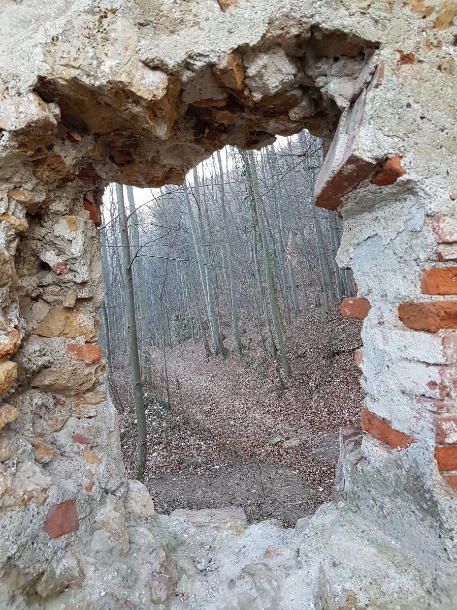 Von der Burg in den Wald.