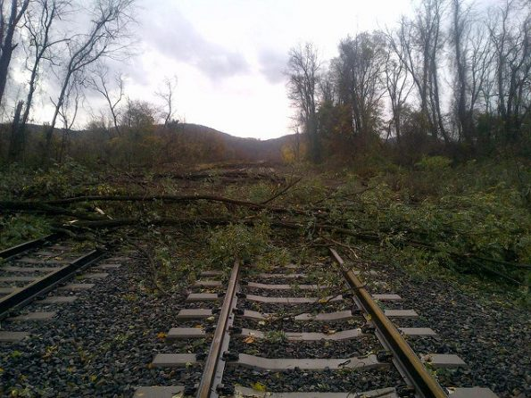 Metropolitan Transportation Authority of the State of New York: Trees down south of MNR's Cold Springs station (2012), CC-BY