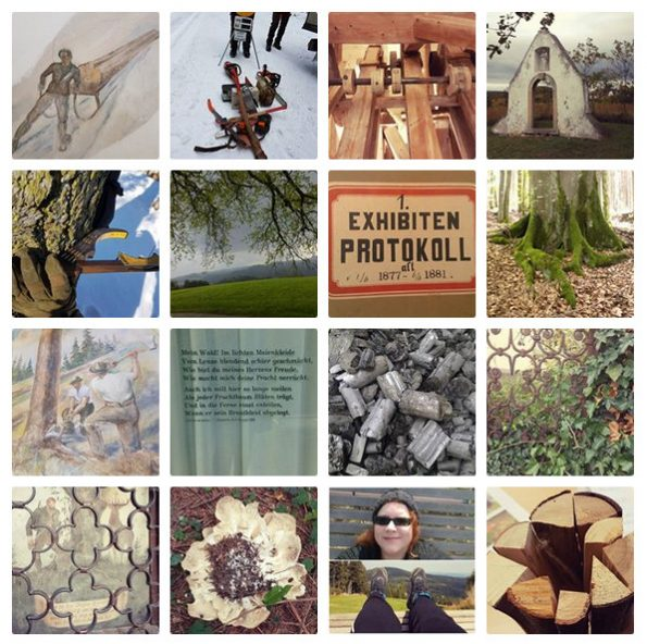 Instagram-Account von Frau von Wald