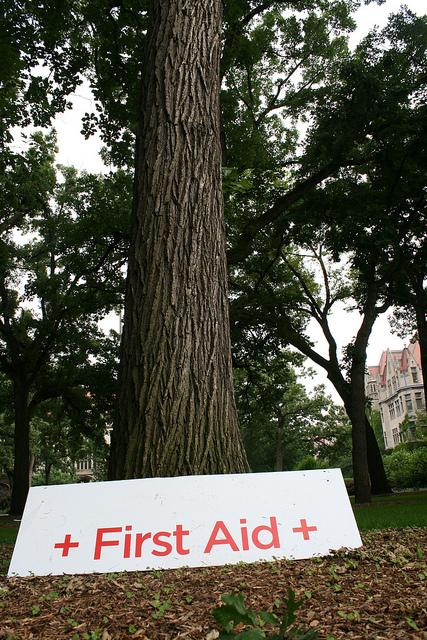 Baum, an dem ein weisses Schild mit der roten Aufschrift First Aid (Erste Hilfe) lehnt