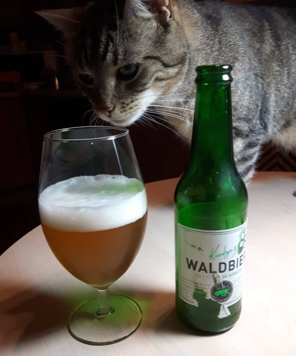 getigerte Katze riecht an Bierglas, daneben Bierflasche