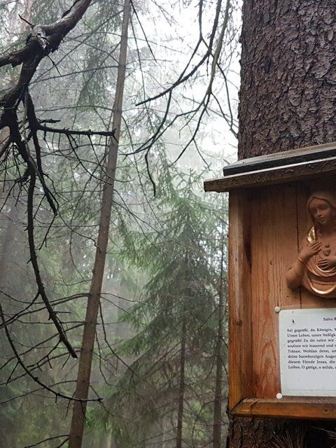 Bildbaum - Ramplach