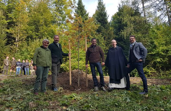 Klosterwald Kirchberg Farbphoto 5 Männer setzen einen Baum ein