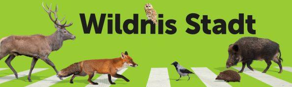 Sujet zur Ausstellung Wildnis Stadt mit verschiedenen Wildtieren
